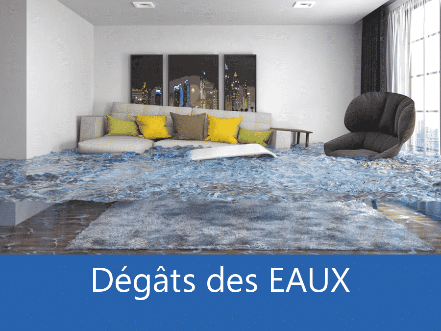 dégâts des eaux 38, expert inondation Grenoble, contre expertise inondation Isère,
